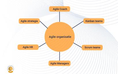 Waaruit bestaat een Agile organisatie?