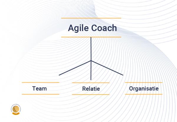 Alles over de Agile Coach niveaus